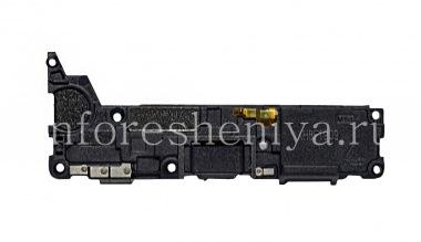 Buy Bottom panel with speaker and antennas BlackBerry KEY2
