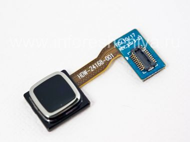 Buy Trackpad (Trackpad) HDW-24168-001 * for BlackBerry 8520